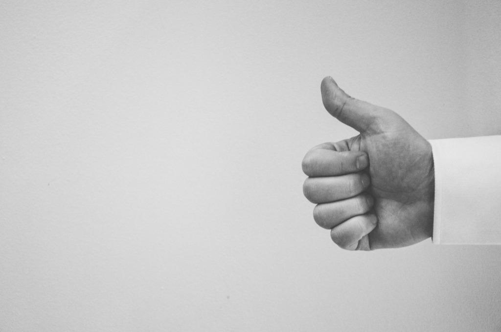 StofelaEnglish - thumb